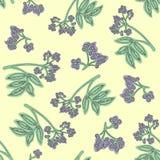 Vlierbes naadloos patroon Kleurrijk ontwerp voor textiel, behang, stof, decor vector illustratie