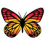 Vlinder 10 vector illustratie