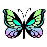 Vlinder 16 royalty-vrije illustratie