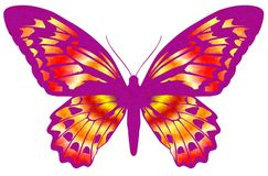 Vlinder 19 royalty-vrije illustratie