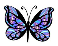 Vlinder 2 Stock Afbeeldingen