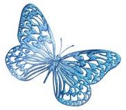Vlinder 22 vector illustratie