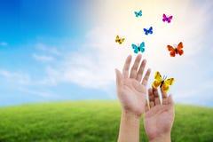 Vlinder die in openlucht op een mooie aard met het concept van het vrijheidsmilieu vliegen Stock Foto's