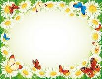Vlinder en bloemen Stock Fotografie
