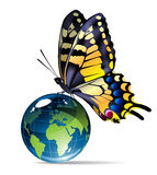 Vlinder-en-bol Stock Afbeelding