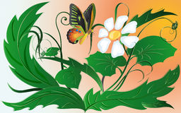 Vlinder en margriet stock illustratie