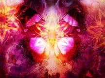 Vlinder en oosterse siermandala en kleuren abstracte achtergrond met vlekken computercollage Royalty-vrije Stock Afbeelding