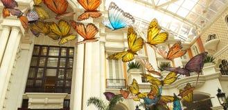 Vlinder en vogels die in de wandelgalerij vliegen stock fotografie