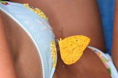 Vlinder en vrouw Royalty-vrije Stock Fotografie