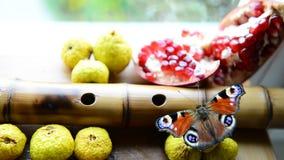 Vlinder en vruchten stock video