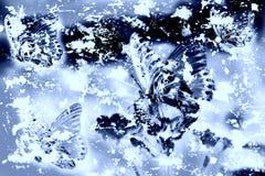 Vlinder Grunge - Achtergrond Royalty-vrije Stock Afbeelding