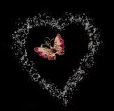 Vlinder in hart fron suiker op zwarte achtergrond Royalty-vrije Stock Afbeelding