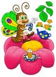 Vlinder het drinken thee op een bloem Stock Fotografie