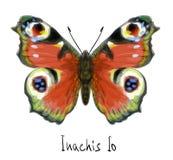 Vlinder Inachis Io. De imitatie van de waterverf. Stock Afbeelding
