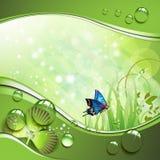 Vlinder, klaver en gras Royalty-vrije Stock Fotografie
