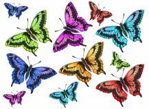 Vlinder met open vleugels royalty-vrije illustratie