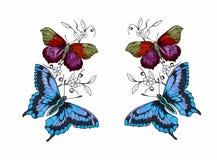 Vlinder met open vleugels stock illustratie