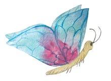 Vlinder met turkooise vleugels op een witte achtergrond royalty-vrije illustratie
