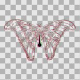 Vlinder op een speld voor collectoren royalty-vrije stock foto's