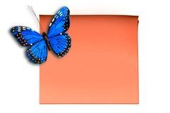 Vlinder op kleverige nota Stock Foto's