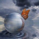 Vlinder op Kristallen bol Stock Foto