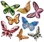 Vlinder - panelen van mozaïek. Geïsoleerd op een witte achtergrond Stock Afbeeldingen