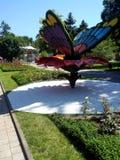 Vlinder in park royalty-vrije stock afbeeldingen