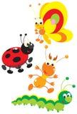 Vlinder, termiet, lieveheersbeestje en rupsband Royalty-vrije Stock Afbeelding