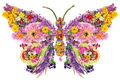 Vlinder van de zomerbloemen Stock Foto