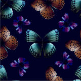 Vlinder 05 zwarte Stock Afbeeldingen