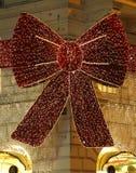 Vlinderdasdecoratie Royalty-vrije Stock Foto