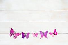 Vlinderdecoratie Stock Afbeeldingen