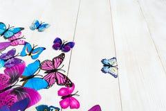 Vlinderdecoratie Royalty-vrije Stock Fotografie
