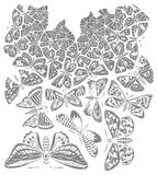 Vlinderillustratie Stock Afbeelding