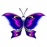 Vlinderkleur stock afbeeldingen