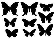 Vlinders Royalty-vrije Stock Afbeeldingen