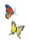 Vlinders Stock Illustratie