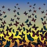 Vlinders in de hemel Stock Fotografie