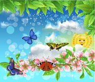 Vlinders in de lente die in de lucht vliegen Stock Afbeeldingen