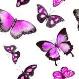 Vlinders Naadloos patroon watercolor Stock Afbeeldingen