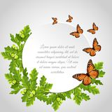 Vlinders om Kader Stock Foto's