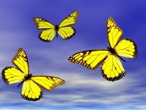 Vlinders tijdens de vlucht Royalty-vrije Stock Foto