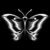 Vlinderschets stock fotografie