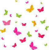 Vlinderskleuren Stock Afbeelding