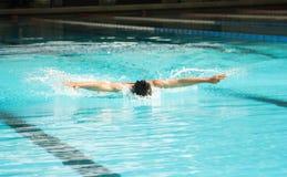 Vlinderslag het zwemmen Stock Afbeeldingen