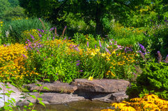 Vlindertuin Royalty-vrije Stock Afbeeldingen