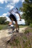 Vélo de montagne Photo libre de droits