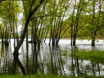 Vloed Stock Foto