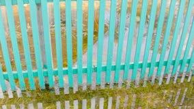 Vloed in de Lente stock videobeelden