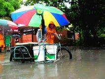 Vloed door tyfoon Mario (internationale naam Fung Wong) wordt veroorzaakt in de Filippijnen op 19 September, 2014 die Stock Afbeelding